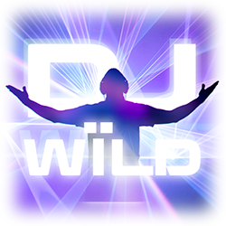 DJ wild slot machine for mobile