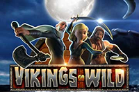 Vikings Go Wild Slot Animated Image
